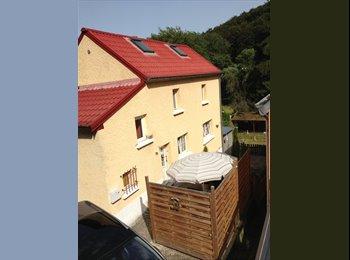 Cherche colocataire/trice pour maison à Kopstal