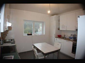 Appartager LU - Chambre meublée sans parking, à Luxembourg Ville - Luxembourg Ville, Luxembourg - 550 € / Mois