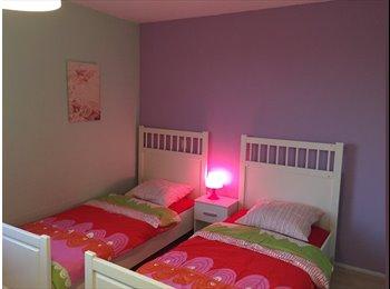 EasyKamer NL - 2 Kamers, 2 rooms, 2 habitaciones - Delft, Delft - € 350 p.m.