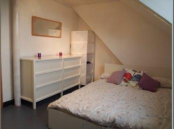 EasyKamer NL - Per direct, gemeubileerd appartement te huur, Delf - Delft, Delft - € 650 p.m.