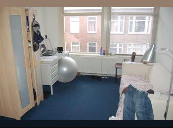 EasyKamer NL - Geert 2v - Zuidplein, Rotterdam - € 385 p.m.