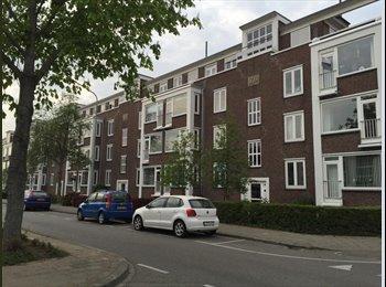 EasyKamer NL - HOUSEMATE WANTED!!! - Buitenwijk Oost, Maastricht - € 380 p.m.