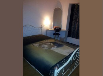 NICE ROOM FOR RENT IN AMSTERDAM