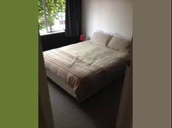 NZ - Furnished easy going household - Greenmeadows, Napier-Hastings - $150 pw