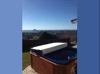 NZ - Room up for rent Minden - Tauranga, Tauranga - $170 pw