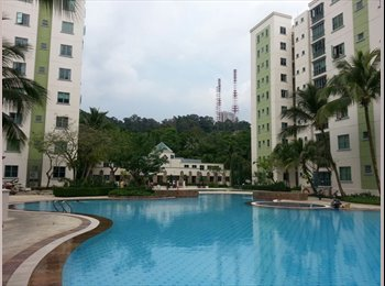 EasyRoommate SG - Room for Rent! - Upper Bukit Timah, Singapore - $850 pcm