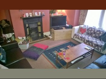 2 double room available in friendly shared house