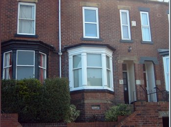 EasyRoommate UK - 4 Excellent Double Rooms Available 1st. July - Hunters Bar, Sheffield - £295 pcm