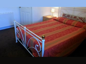EasyRoommate UK - Single Bedded room with WIFI - Newton, Chester - £315 pcm