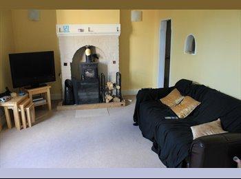 EasyRoommate UK - Nice bedroom within walking distance of Worcester - Martin Hussingtree, Worcester - £290 pcm