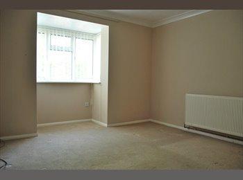 EasyRoommate UK - Room to rent in Biggleswade - Biggleswade, Biggleswade - £299 pcm