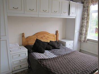 EasyRoommate UK - Room to rent - Bedhampton, East Hampshire and Havant - £500 pcm