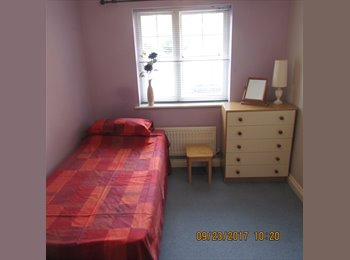 EasyRoommate UK - Double room available near Newbury - Newbury, Newbury - £400 pcm