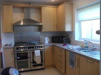 EasyRoommate UK - Beautiful ensuite room to rent - Exeter, Exeter - £525 pcm