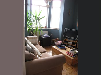 Fab room in Victorian house in town centre