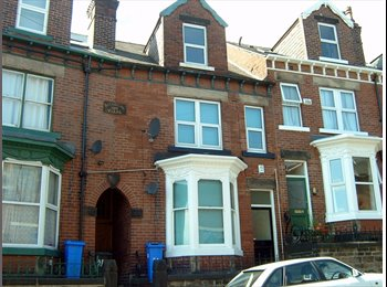 EasyRoommate UK - 4 Double rooms remaining in large property - Hunters Bar, Sheffield - £300 pcm