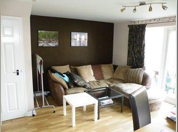 EasyRoommate UK - Spacious Bedroom - friendly house - Peterborough, Peterborough - £420 pcm