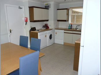Double room, well maintained, clean & nice tenants