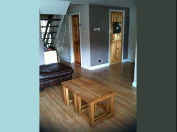 EasyRoommate UK - Big Double  room in a modern clean house - Basingstoke, Basingstoke and Deane - £550 pcm