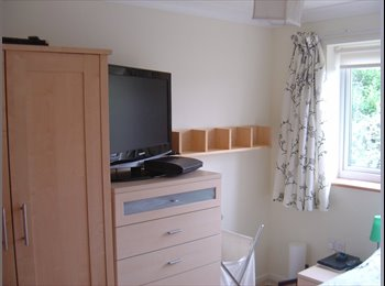 EasyRoommate UK - Double sized room available - Chelmsford, Chelmsford - £575 pcm