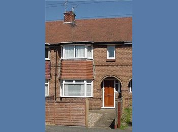 Large double rooms in Student Shared house