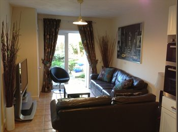 EasyRoommate UK - Our House. In the middle of Crwys Road. - Cathays, Cardiff - £385 pcm