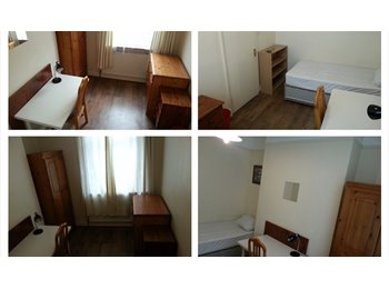 EasyRoommate UK - Lovely double room in fully equipped house - Stoke, Coventry - £250 pcm