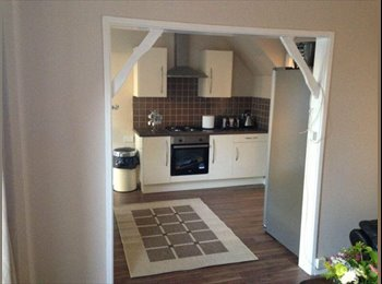 Spacious and Clean Double Room Available