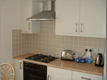 EasyRoommate UK - DOUBLE BEDROOM TO LET - St Judes, Plymouth - £360 pcm