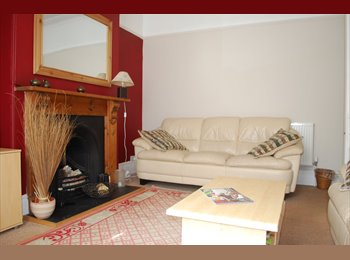 EasyRoommate UK - Peverell Double Room - Plymouth, Plymouth - £330 pcm