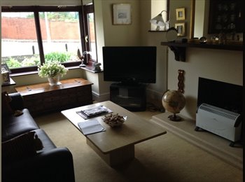 EasyRoommate UK - Detached house Newton - Newton, Swansea - £350 pcm
