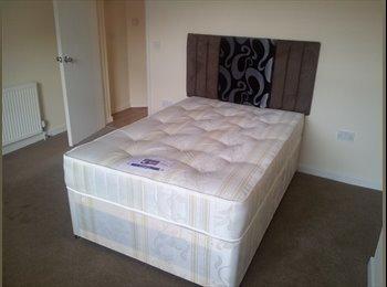 EasyRoommate UK - Double Spacious Room Birmingham City Centre - Edgbaston, Birmingham - £400 pcm