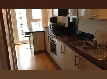Superb Furnished One Bedroomed Apartment