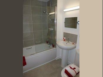 EasyRoommate UK - Very Specious double bedroom in Aylesbury - Aylesbury, Aylesbury - £480 pcm
