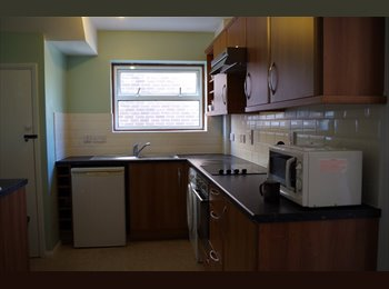 EasyRoommate UK - double/single  Rooms In Wivenhoe - Wivenhoe, Colchester - £320 pcm