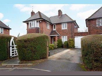 EasyRoommate UK - Large modern house & garden - East Finchley, London - £880 pcm