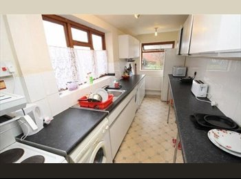 large Double & single room in Shared house