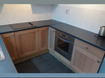 EasyRoommate UK - Large Double room. Internet - Mansfield, Mansfield - £260 pcm