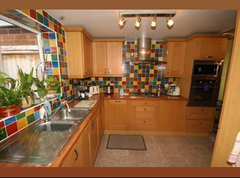 EasyRoommate UK - Fantastic location in Styvechale - Styvechale, Coventry - £350 pcm