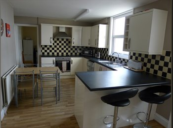EasyRoommate UK - SUPERB LOCATION - JUST 2 MINUTES WALK TO UNI - Plymouth, Plymouth - £390 pcm