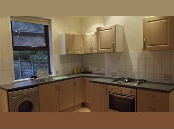 Shared House, Fallowfield