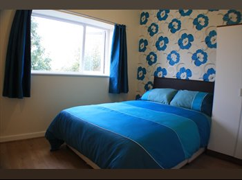 EasyRoommate UK - Brand New Double Room  - Eccles - Eccles, Salford - £347 pcm