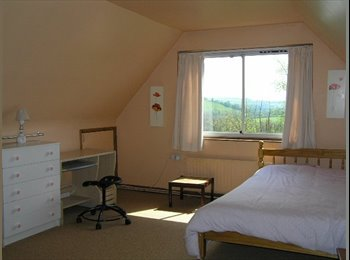EasyRoommate UK - Rooms Available - Tiverton, Tiverton - £320 pcm