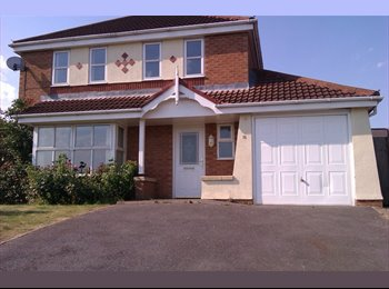 EasyRoommate UK - Double bedroom near city centre - Braunstone, Leicester - £390 pcm