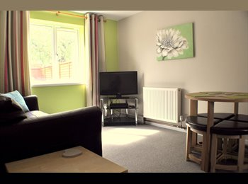 EasyRoommate UK - Lovely Room In in Medical Staff home - Female Only - Abington, Northampton - £430 pcm
