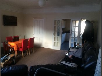 JULY-AUGUST ROOMMATE WANTED in cheap house- Fulham