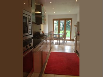 Good size modern 1 room ensuite Chiswick