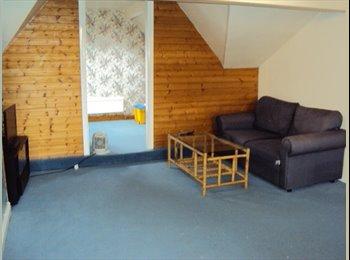 EasyRoommate UK - Large lockable furnished attic dorma flat for rent - Chapeltown, Leeds - £500 pcm