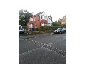 EasyRoommate UK - shared accommodation in chorlton - Chorlton Cum Hardy, Manchester - £350 pcm