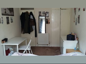 3 Bedroom flat Available in NW8 ( Fabio )